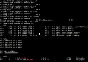 Fig.01 nginx.rc in action
